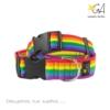 Collar para perros arcoíris
